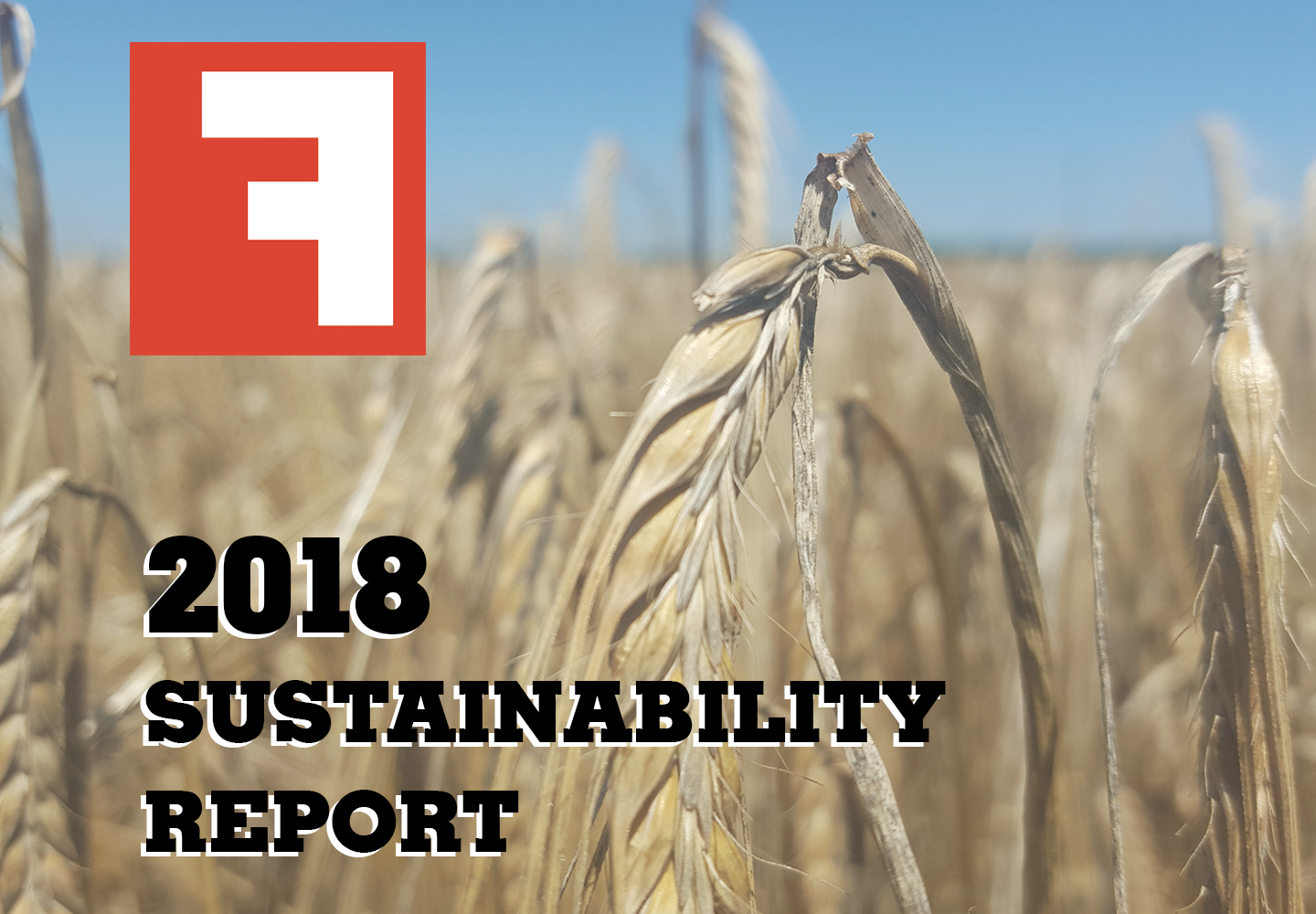 2018-sustainabiity-report-wide.png#asset:8477