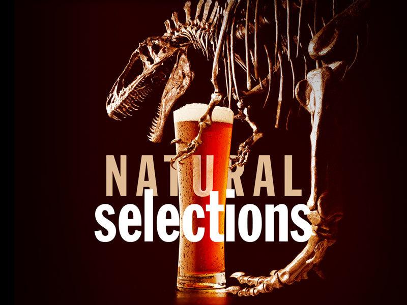 NaturalSelections_800x600.jpg#asset:10618