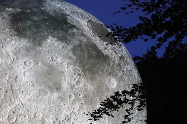 museum-of-the-moon.jpg#asset:12386